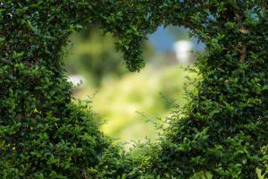 amour et conflit